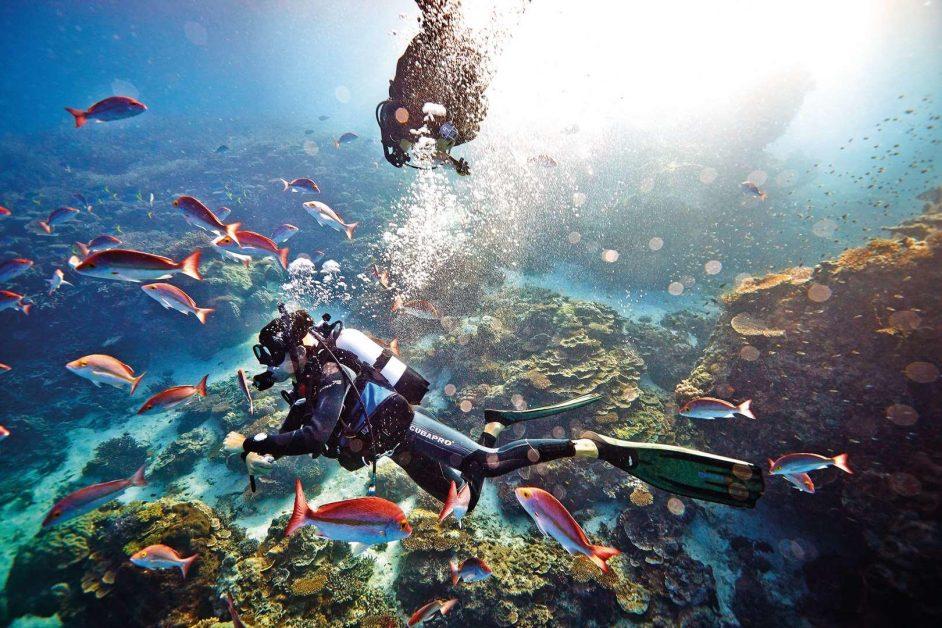 Best Snorkling Vacations - Heron Island Australia