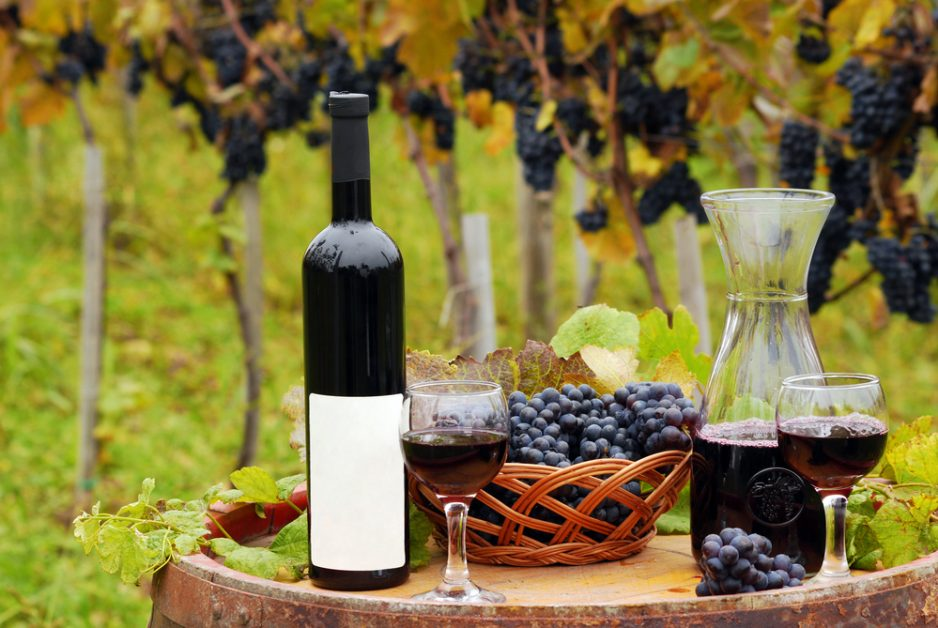 Vacations in Australia Best Wine Tours